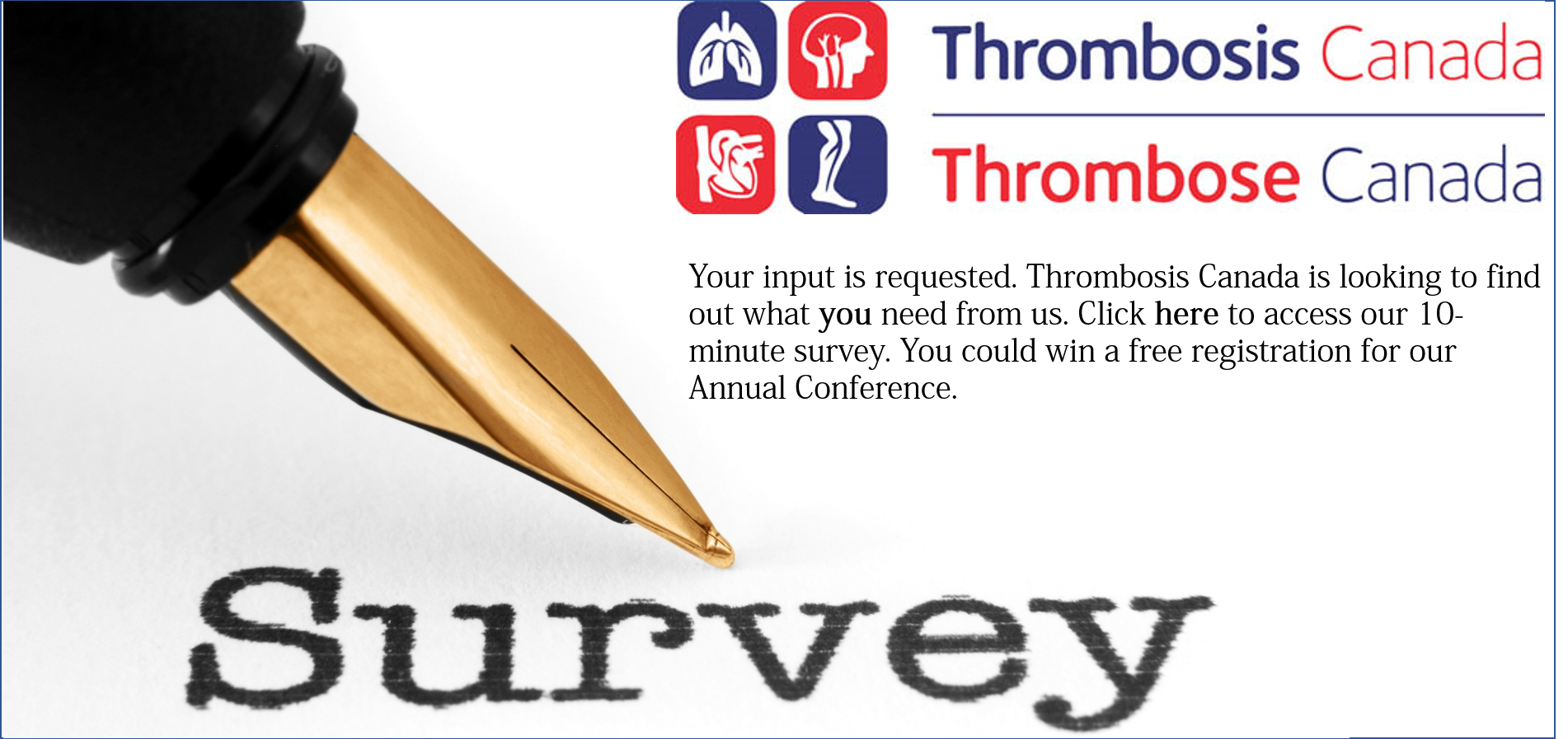 Survey-graphic-for-website